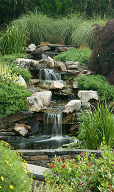 Waterfall & Pond