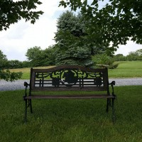 bench-in-grass
