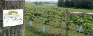 romantic getaways in pa wine trail