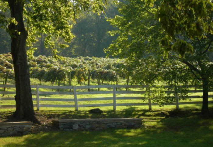 Nissley Winery in Pennsylvania