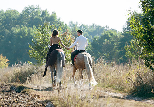 Horse Riding Tours In Gettysburg Pa