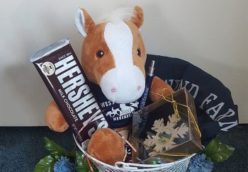 Stuffed horse with chocolate in kids basket