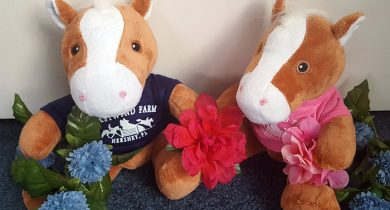 Two stuffed horses