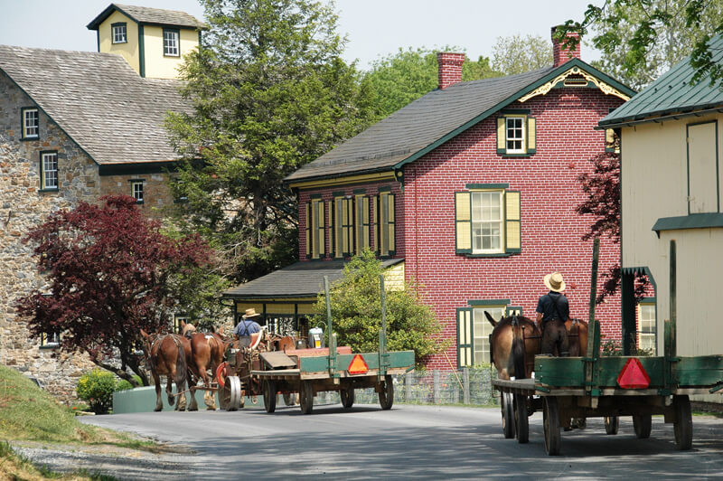 Amish town with horse and buggies