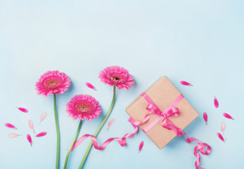Pink flowers and wrapped gift on light blue background