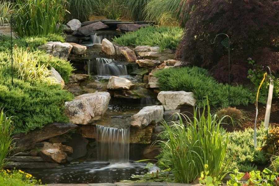 a waterfall and garden
