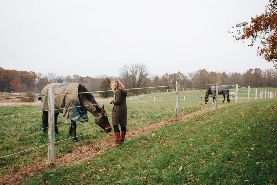 woman visiting horse at the inn