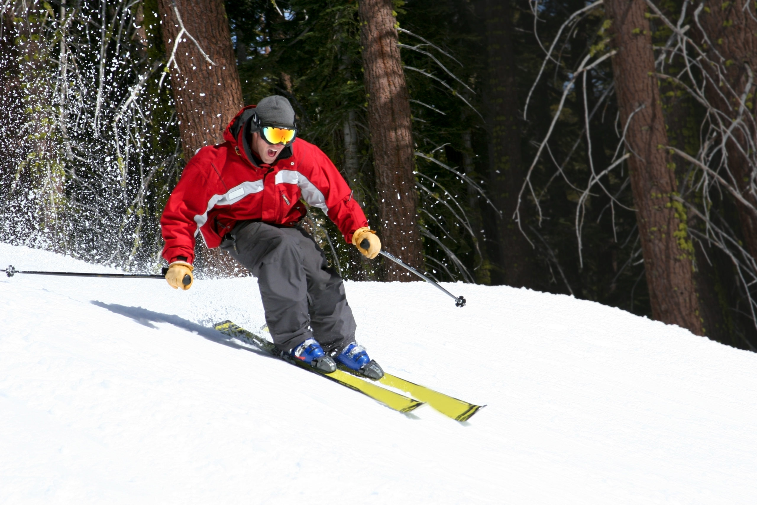 Man in red ski jacket skiing down hill with a backdrop of trees