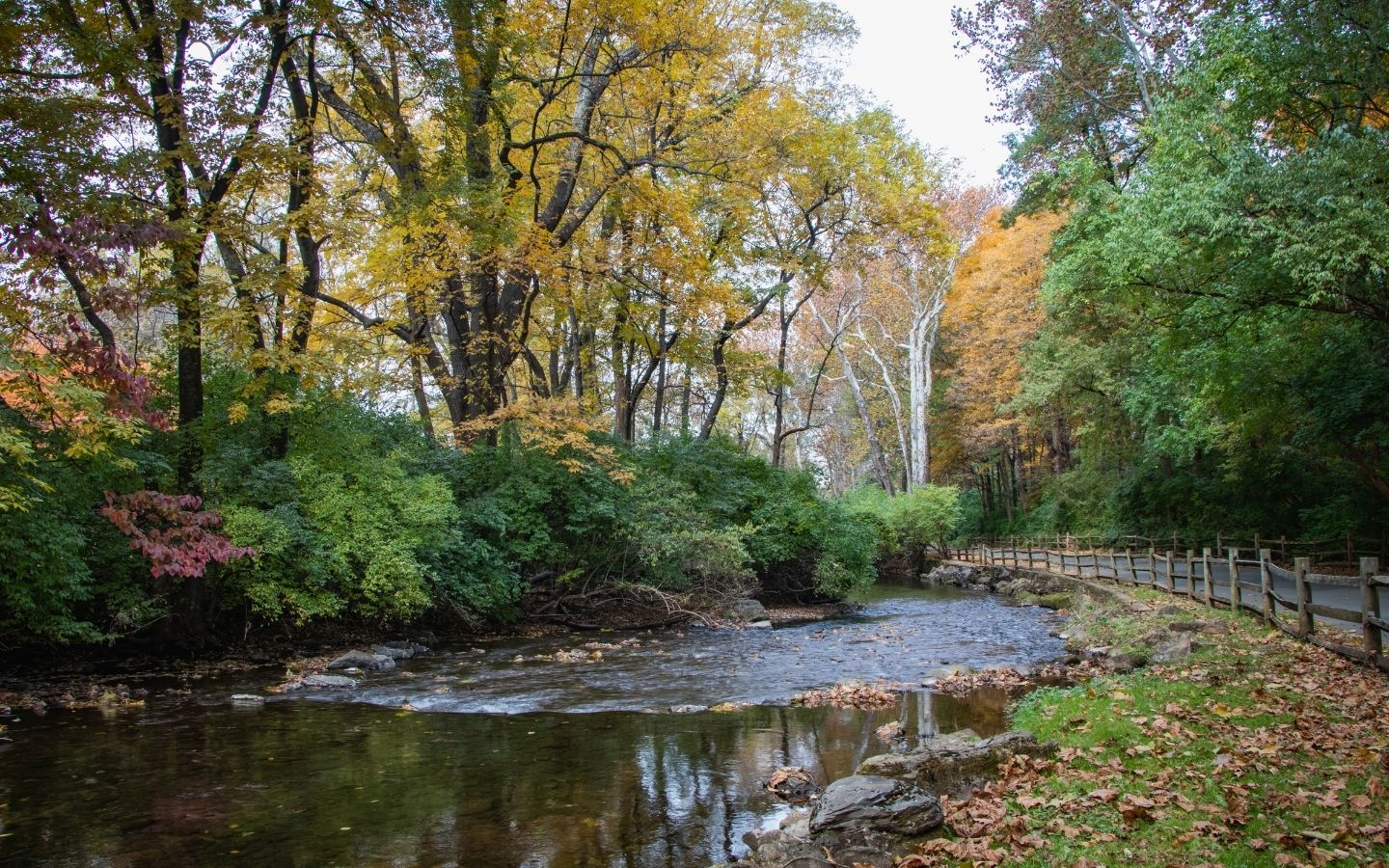 Pennsylvania park with creek and waterfall surrounding by trees in autumn hues